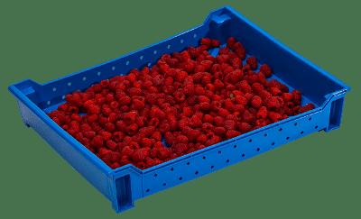 Harvest Trays